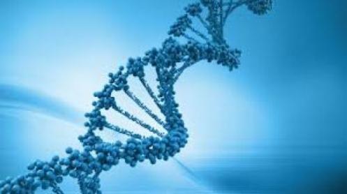 Genética-extraterrestre