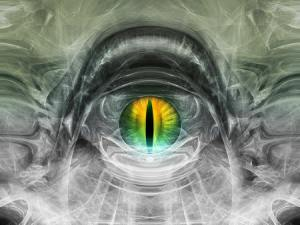 conscious_universe644_01_small