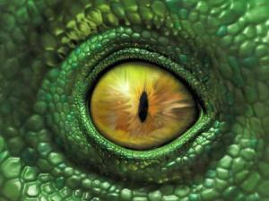 reptiles117_03_small